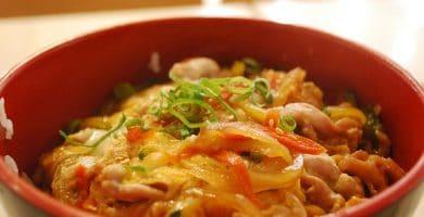 Ramen con pollo Ramen. Saratanmen Ramen. Cocina Japonesa. Salsa de soja. Noodles. Saratamen